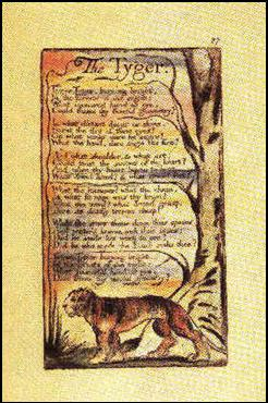 william blakes the tyger George norton's close reading of william blake's 'the tyger' considers the  poem's imagery through 18th-century industrial and political.